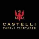 CastelliFV logo
