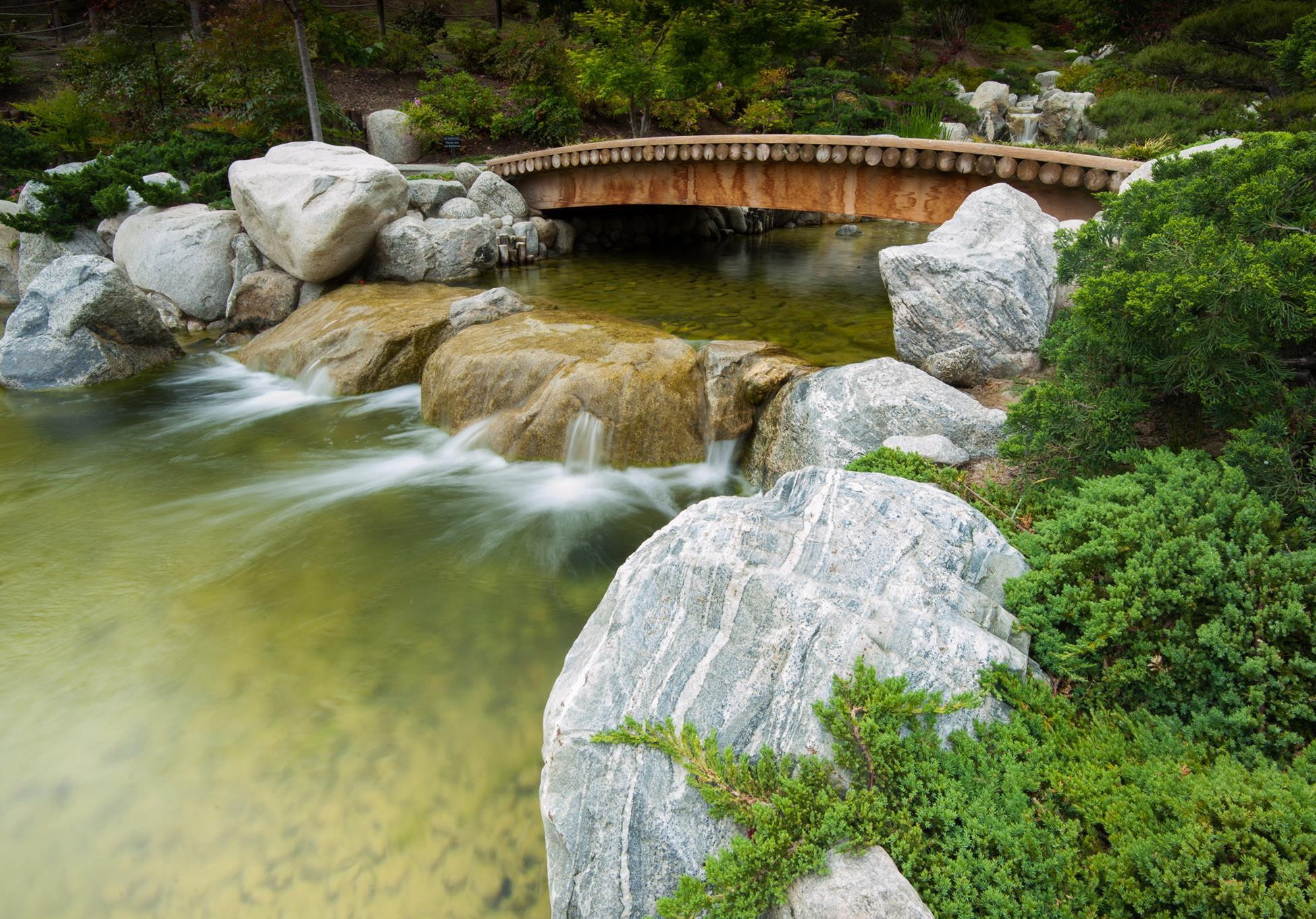 Awesome Japanese Friendship Garden Of San Diego