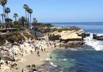 Guide To La Jolla Beaches Ss Cove And Beyond