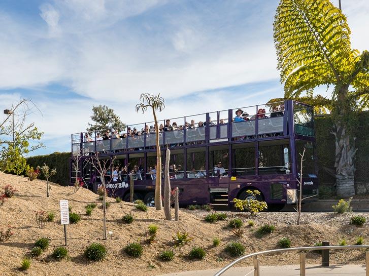 San Diego Zoo Bus Tour - Accessible San Diego
