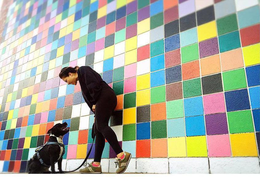 La Jolla Murals