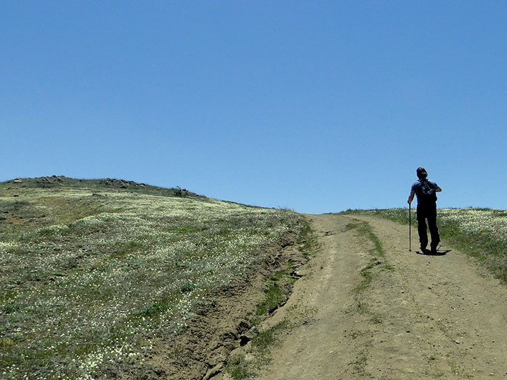 Volcan Mountain - Seven Best Mountain Hikes in San Diego County