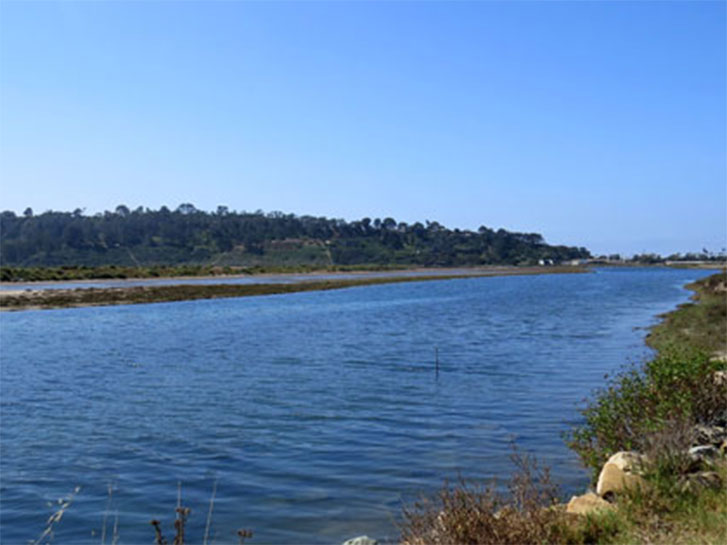 Dog Friendly Hike San Dieguito
