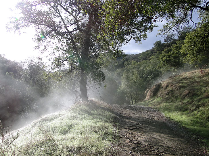 Best Inland Hikes in San Diego County - Daley Ranch