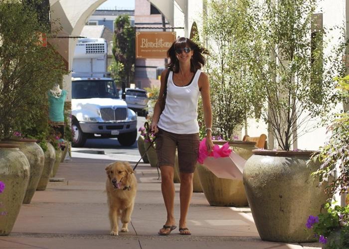 San diego dog washes pet boutiques spas solutioingenieria Images