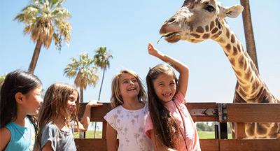Kids Free San Diego