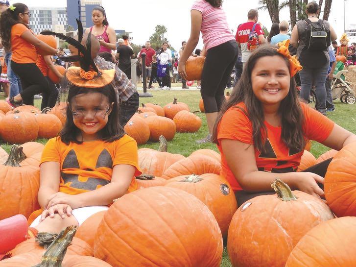 San Diego County Waterfront Pumpkin Patch