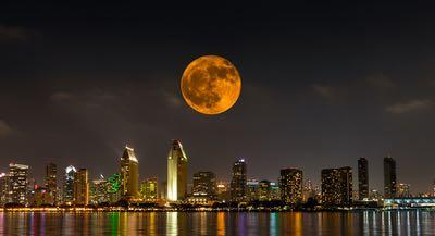 Halloween Happenings in San Diego