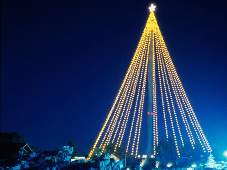 Christmas Tree at SeaWorld San Diego