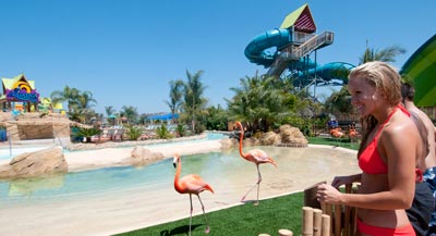 Summer Fun at San Diego Attractions