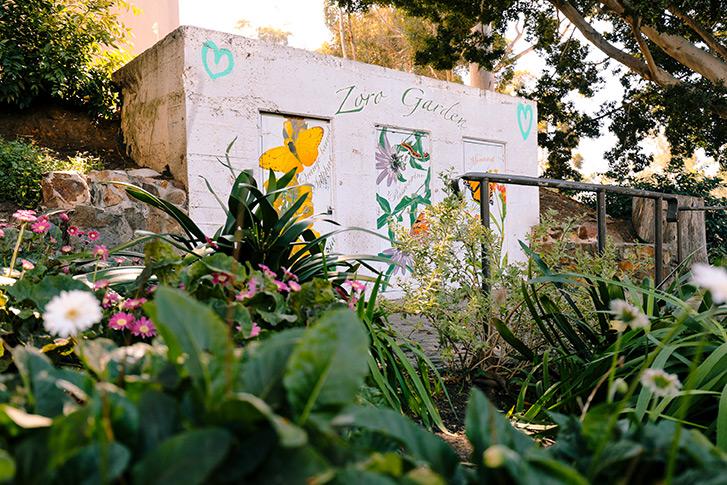 Zoro Garden