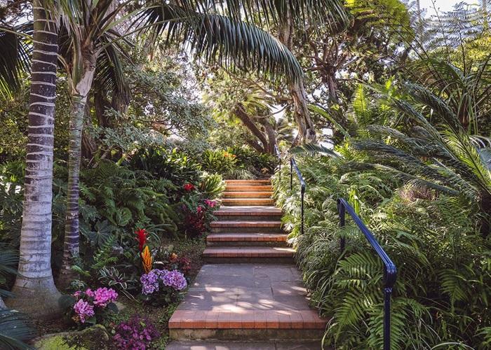 San Diego Botanical Gardens 7 Best Botanic Other Gardens In San Diego Ca