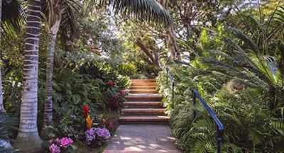 Self-Realization Fellowship Meditation Gardens San Diego