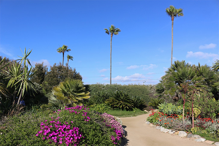 Self-Realization Fellowship Meditation Gardens