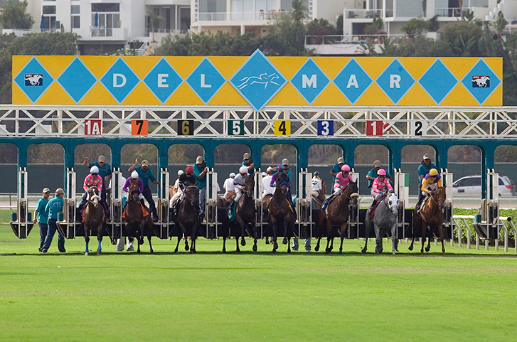 Thoroughbred Racing at the Del Mar Racetrack