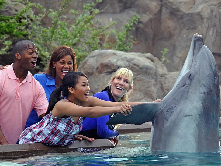 Seaworld San Diego CA Dolphin Encounters