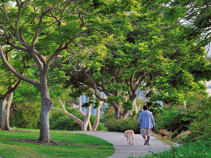 Balboa Park with dog Courtesy Brett Shoaf