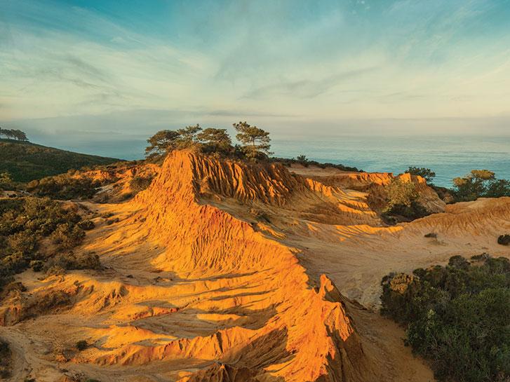 Picturesque La Jolla Torrey Pines in San Diego CA
